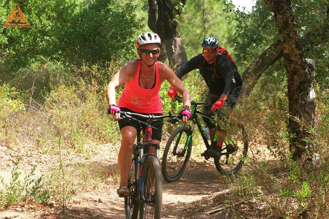 Monchique Downhill Off-Road-Radtour vom Mount Foia