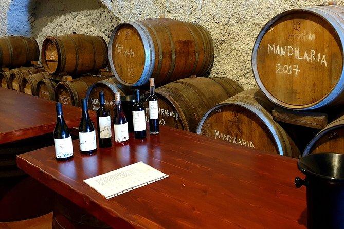 Santorini Wine Tasting and History Small Group Tour