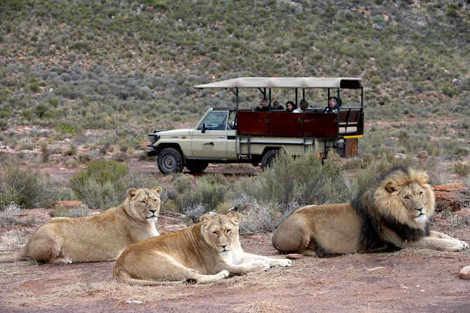 Shared Transfers to and from Safari Game Reserve (excluding entrance fees)