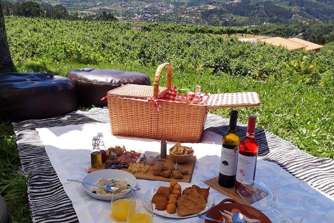Wine Tour & Regional Picnic - Quinta de Santa Cristina Wine Estate