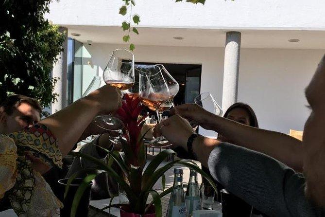 Wine X1 Tours