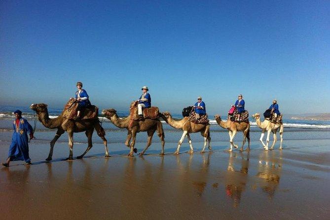 Agadir camel ride sunset & barbecue