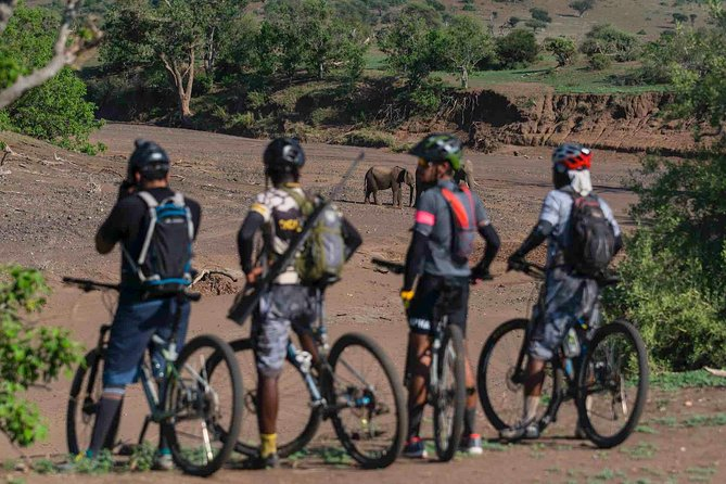 Big Game Cycle Safari MTB (mountain bike) Botswana and South Africa photo 3
