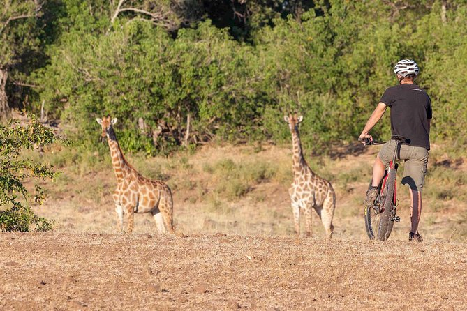 Big Game Cycle Safari MTB (mountain bike) Botswana and South Africa photo 12