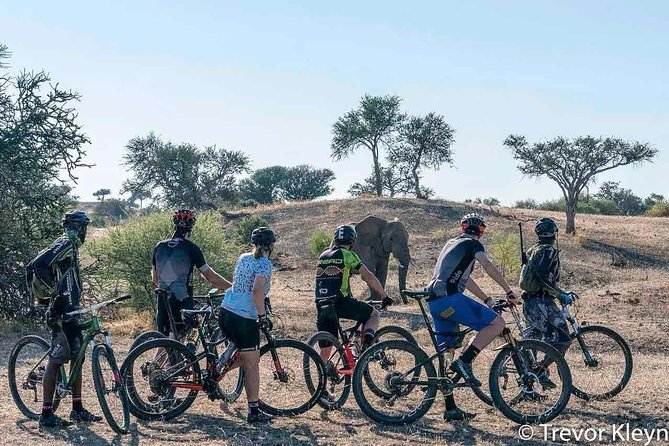 Big Game Cycle Safari MTB (mountain bike) Botswana and South Africa photo 10