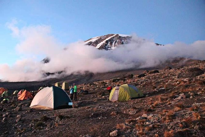 1 Day Kilimanjaro Hike Machame Route photo 7
