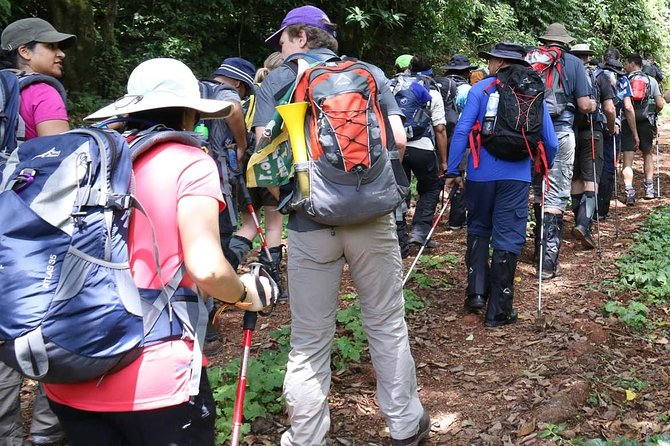 1 Day Kilimanjaro Hike Machame Route
