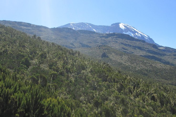 1 Day Kilimanjaro Hike Machame Route photo 2