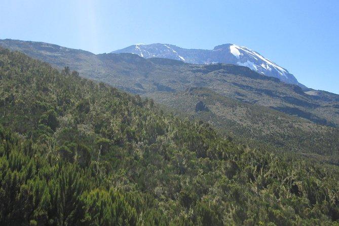 Machame day hike