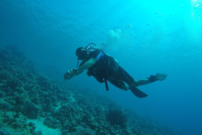 """DSD """"Discover Scuba Diving"""" (Min Age 10 Years)"""