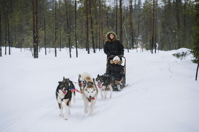 Husky Safari from Rovaniemi Including a Husky Sled Ride photo 9