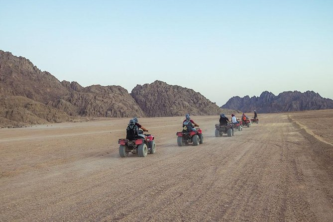 Quad biking with Camel ride and Beduin dinner photo 3