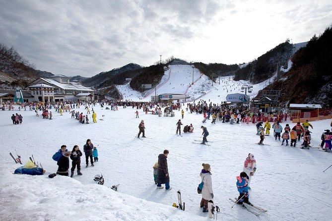Elysian Gangchon Ski with Nami Island and Garden of Morning Calm(Light Festival)
