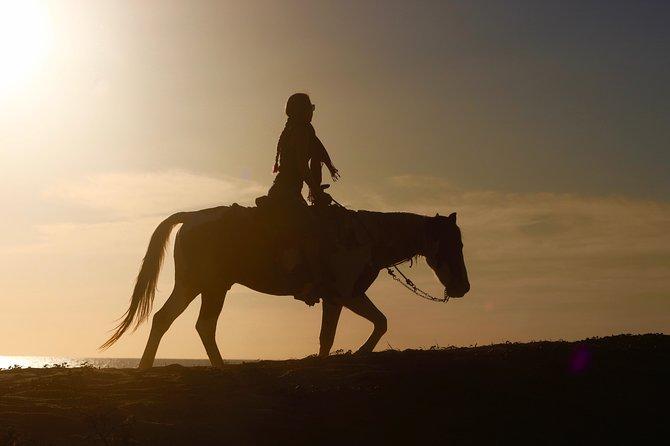 Combo: ATV+Horses