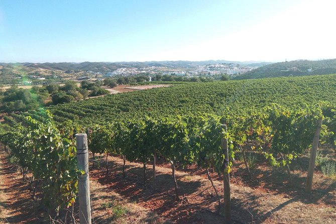 Algarve Wine Tour in Lagoa and Silves with Lunch
