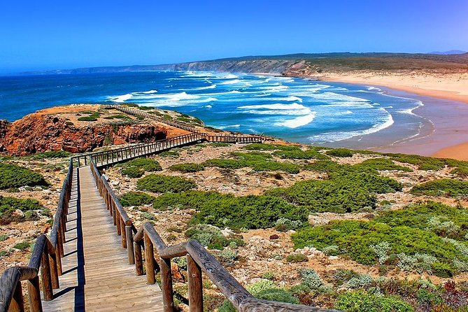 Small-Group Day Trip to Costa Vicentina from the Algarve