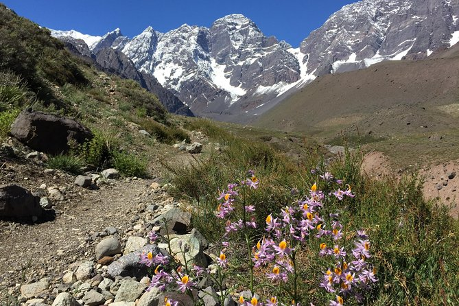 Juncal Andean Park: Hiking over a Glacial Tongue