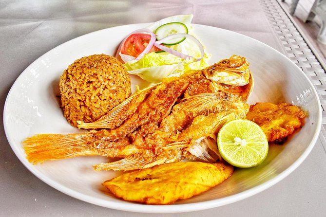 Baru and Playa Blanca Transportation and Lunch from Cartagena
