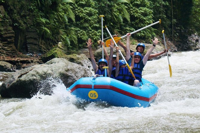 Ayung River Rafting and Rice Terrace, Holy Water Temple, Waterfall Tour