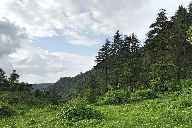 Chhaskhet Nature Walk