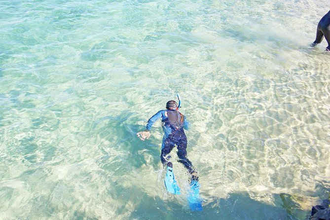 Wave Break Island Snorkel Tour on the Gold Coast