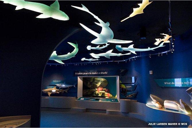 New York Aquarium Admission Tickets