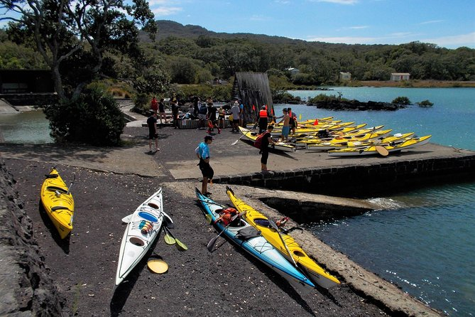 Auckland Rangitoto Island Guided Daytime Kayaking Tour photo 11