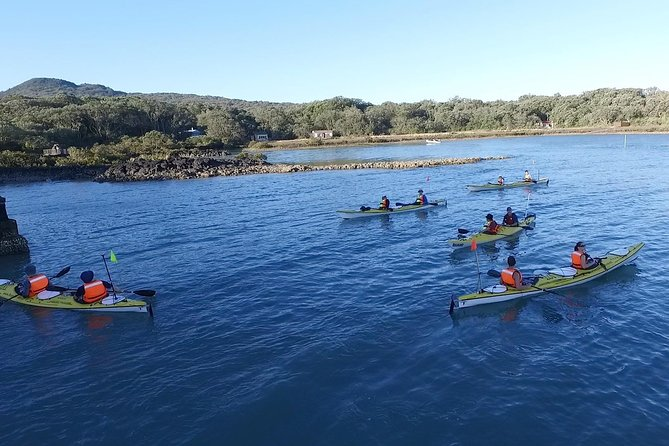 Auckland Rangitoto Island Guided Daytime Kayaking Tour photo 8