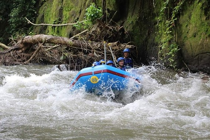 Ayung River Rafting and Kintamani Volcano, Besakih Temple Tour