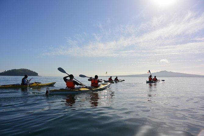 Half-Day Auckland North Head Guided Kayaking Tour photo 7