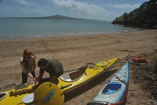 Half-Day Auckland North Head Guided Kayaking Tour photo 8