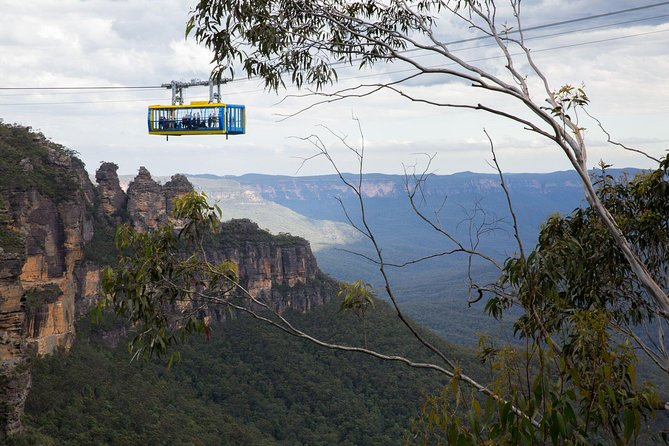 Blue Mountains Express & City Highlights Combo