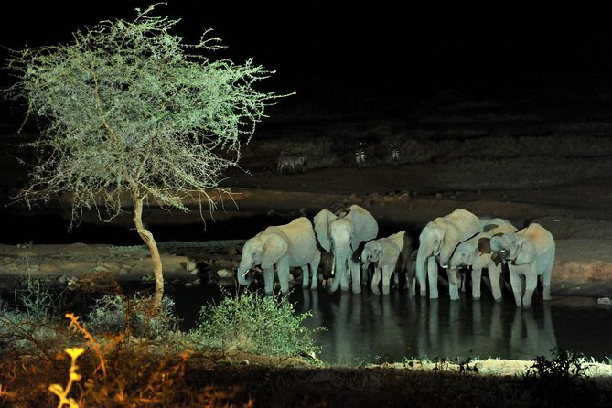 Amboseli/ Tsavo West/ Tsavo East 6 Days Safari photo 3