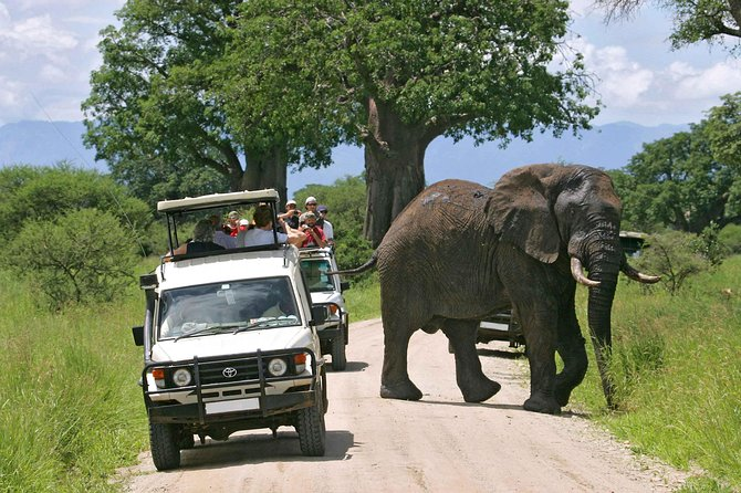 Amboseli National Park Guided Full Day Tour photo 1