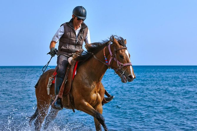Hurghada: Sea and Desert Tour by Horse