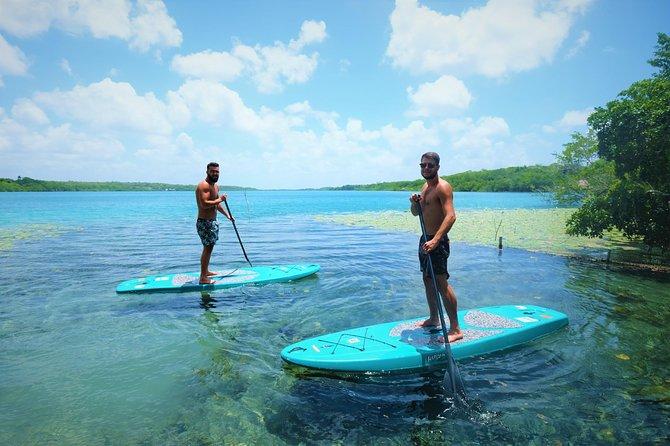 Bacalar sunrise villa experience in rowing board