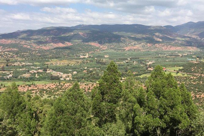 Half day hiking in Ouirgane