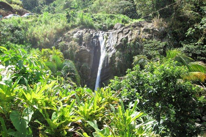 Half Day Grenada Sunshine Highlights Tour