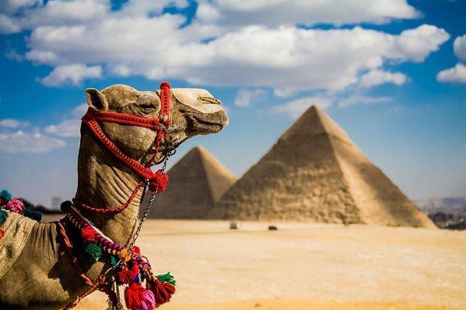 Cairo & Nile Cruise by flight 6 nights