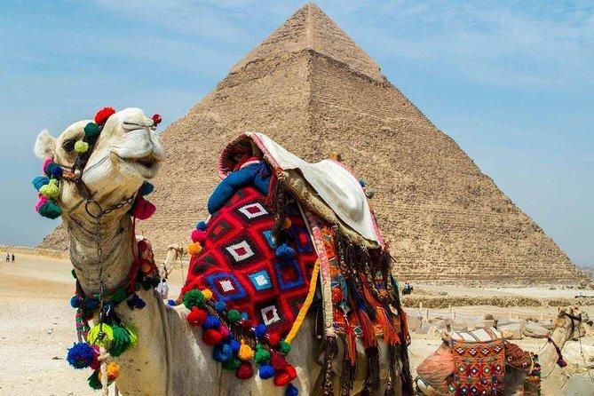 Cairo & Nile Cruise 6 Night By Train