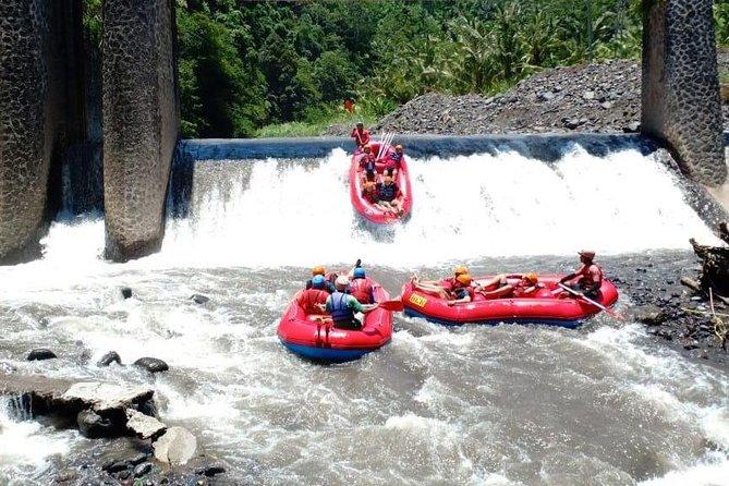Telaga Waja Rafting and Bali Best Waterfalls Tour
