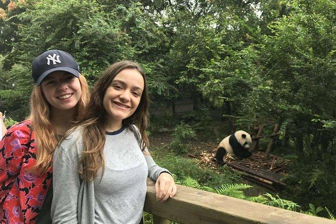 Chengdu Discovery: Panda Base and Giant Buddha Day Trip