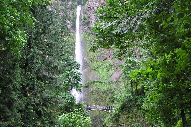 Multnomah Falls & City Tour with Gray Line
