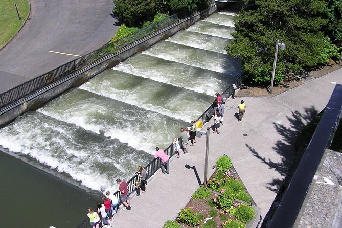 Multnomah Falls & City Combination Tour with Gray Line