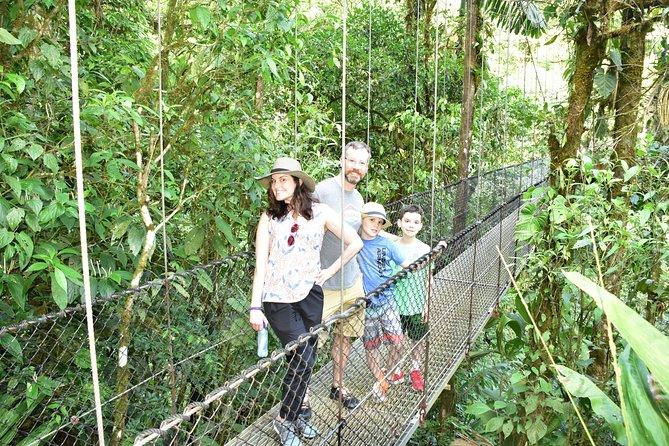Arenal Volcano Hike,Hanging Bridges,La Fortuna Waterfall and Free Hot Springs