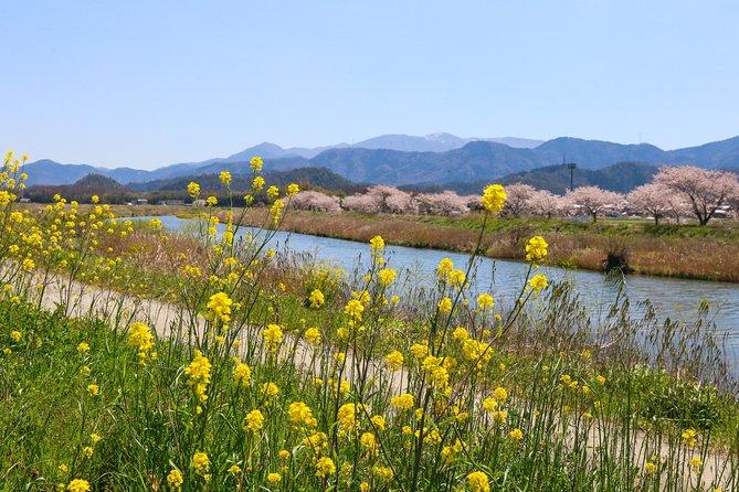 Local Landscape Explorer: Half-Day Bicycle Tour Near Kyoto
