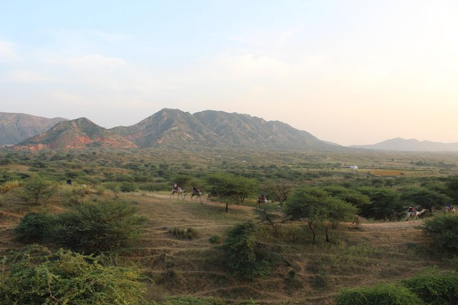 Day Hiking in Desert & Hills