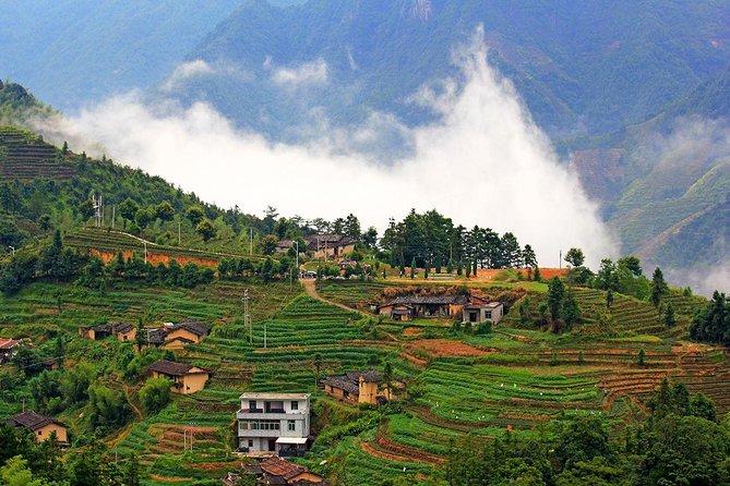Private One Day Anxi Bama Tea Garden and Hong'en Rock Tour from Xiamen