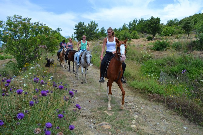 Horse Safari to Ancient Syedra photo 8