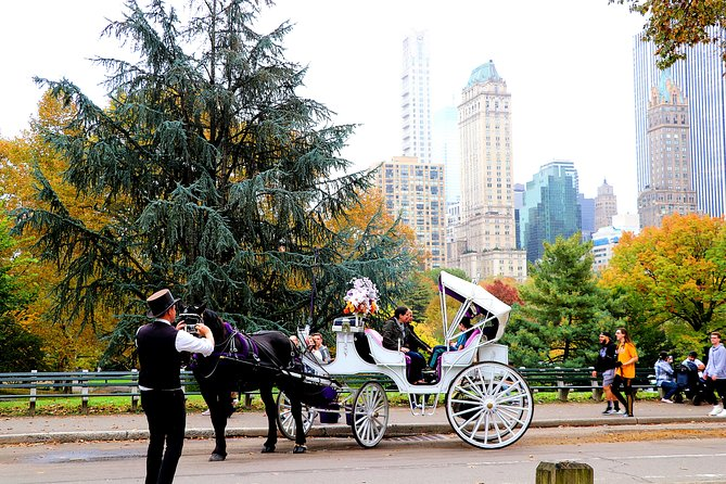VIP Horse Carriage Ride through Central Park in NYC with Photo Stops